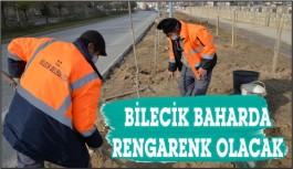 BİLECİK'İ İLKBAHARA HAZIRLANIYOR